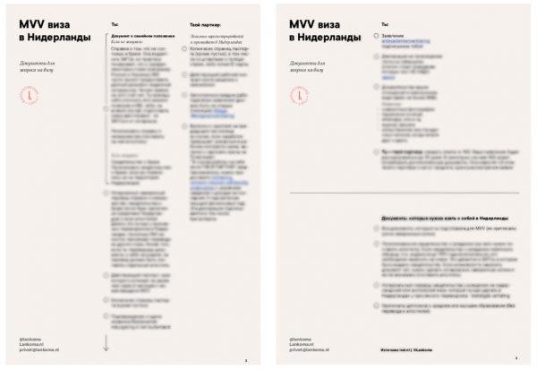 MVV виза в Нидерланды. Полный чек-лист